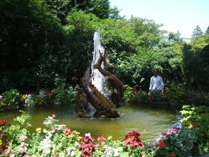 Buchart Gardens-Fish fountain