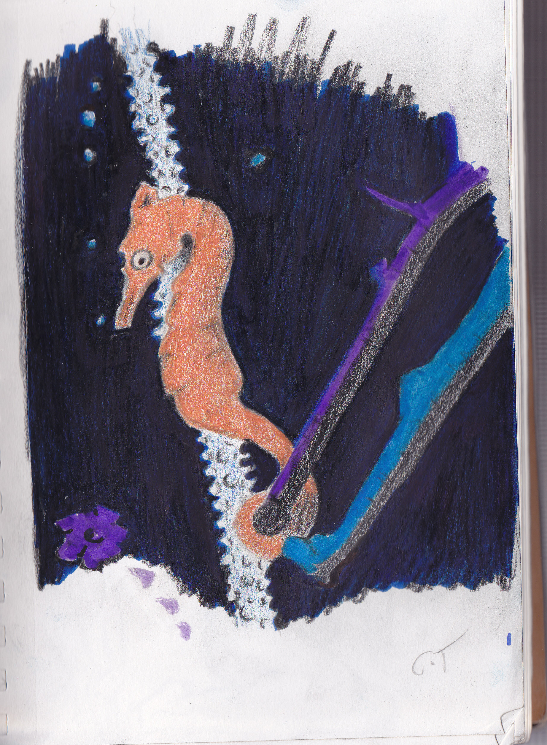Also finished this seahorse requestedc by bevchen it was done